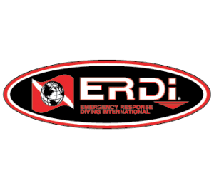 erdi_shield_transparent